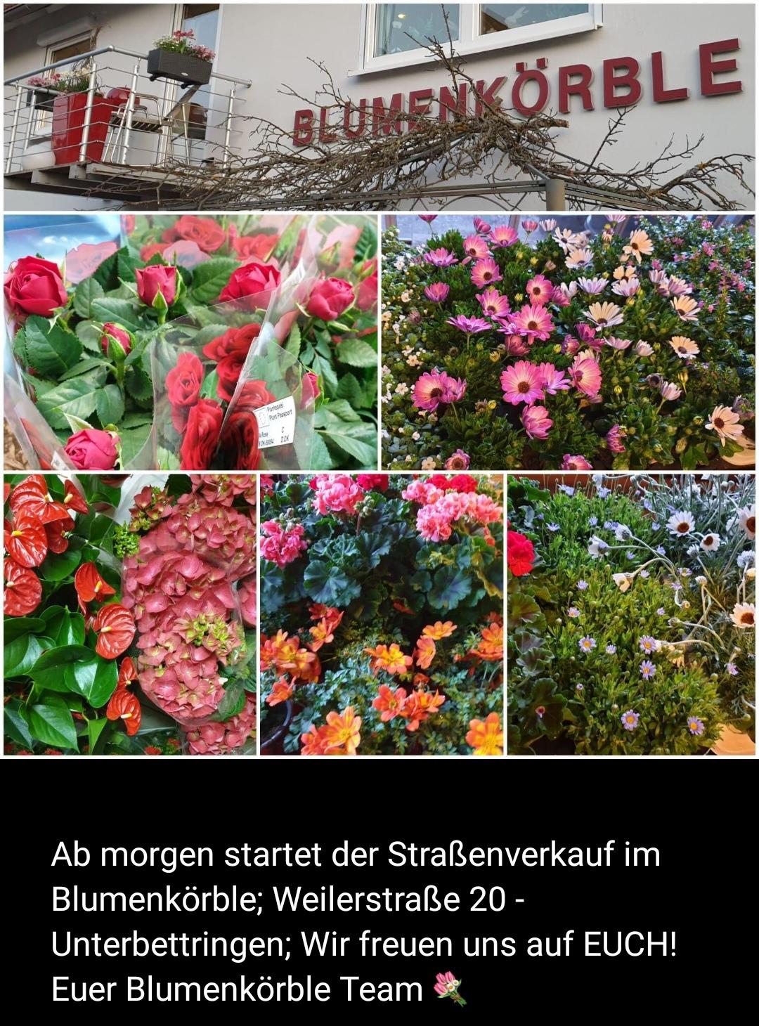 Blumenkörble